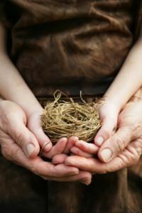 nest-hands